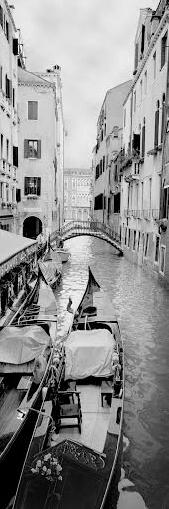 Venice vertical